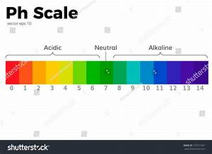 Ph Scale Universal Indicator Ph Color Stock Vector