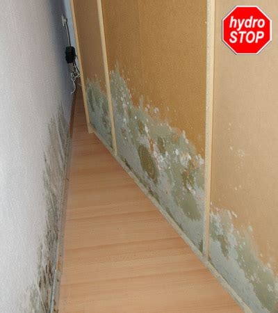 schimmel im schlafzimmer schimmel im schlafzimmer extrahierger 228 t f 252 r polsterm 246 bel
