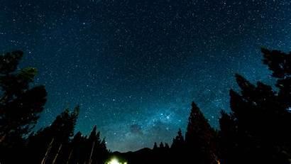 Sky Night Starry Stars Nebula Forest Background