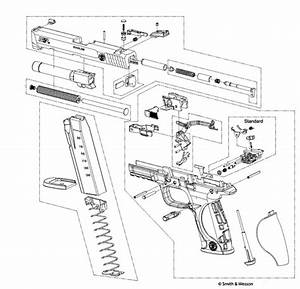 Smith And Wesson M P 22 Diagram