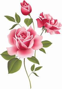 Web Design | Pink roses, Floral border and Clip art
