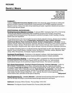 resume sample resume writing company omaha stern pr With independent insurance adjuster resume