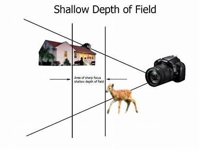 Depth Field Focus Shallow Increase Shots