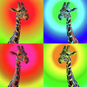 Giraffe Pop Art