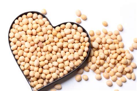 115 manfaat dan khasiat kacang kedelai untuk kesehatan