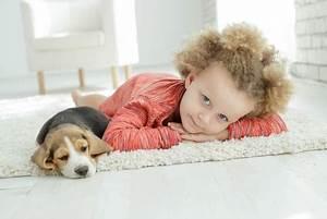 Haustiere Für Kinder : lll haustiere f r kinder unsere top 5 familien kind portal ~ Orissabook.com Haus und Dekorationen