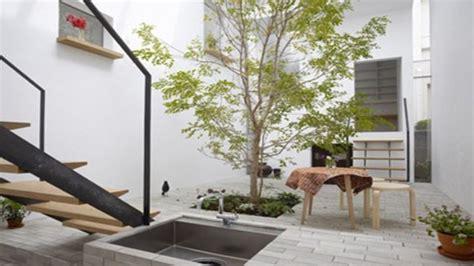 inilah jenis tanaman  taman minimalis   rumah