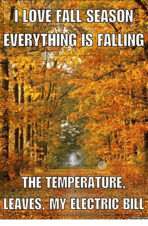 25+ Best Memes About I Love Fall  I Love Fall Memes