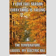 25+ Best Memes About I Love Fall  I Love Fall Memes
