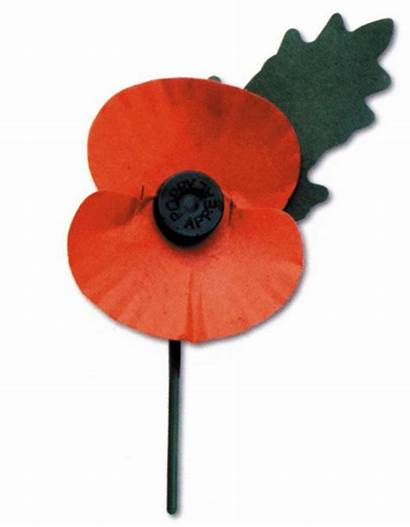 Poppy Remembrance British Clipart Legion Royal Appeal