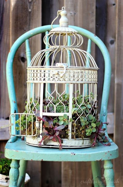creative ideas for bird cages 4724 best images about creative ideas on pinterest
