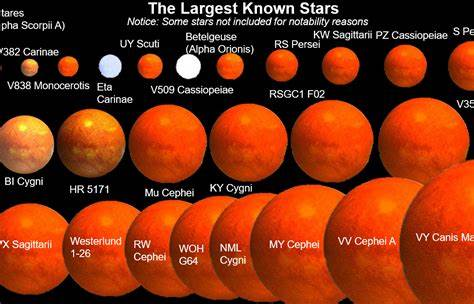Universe Size Comparison