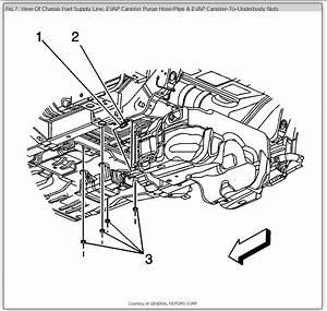 2006 Holden Captiva Fuel Pump  Hi  I U0026 39 M Just Wondering If You Need