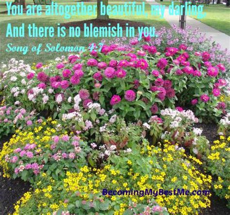 Garden Of The Gods Flowers by We Are All Flowers In God S Garden Becoming My Best Me