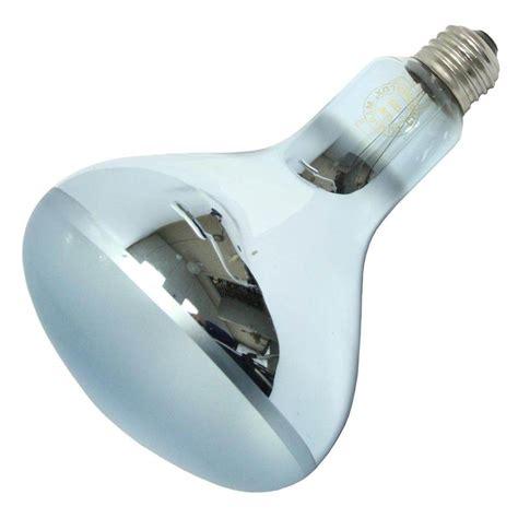 spectrum light bulbs lumiram 51156 r40fl 120w reflector flood daylight