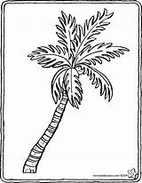 Palmier Colouring Palm Kleurplaat Tree Palme Palmboom Kiddicolour Coloriage Kiddimalseite Coloring Ausmalbilder Colorier Dessin Tekening Bos Palmera Kiddicoloriage Het Age sketch template