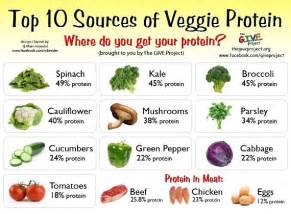 Vegetable Protein Sources Chart
