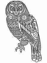 Coloring Owl Pages Adults Adult Printable Mycoloring Owls sketch template