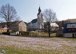 Wann Blühen Krokusse : krokuswiese in drebach vor der evangelischen kirche ~ Eleganceandgraceweddings.com Haus und Dekorationen