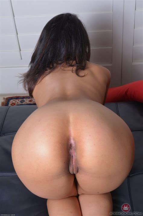 Sophia Leone Haremmaster