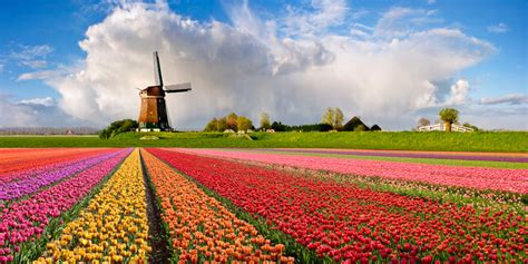 belgian cuisine brussels netherlands gently beautiful country hostel in