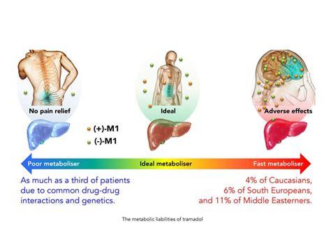 moving  dangerous opioids  pain syntrix creates