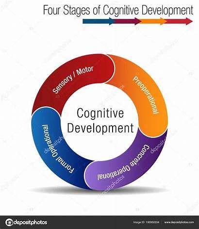 Development Stages Cognitive Intellectual Four Psychology Illustration