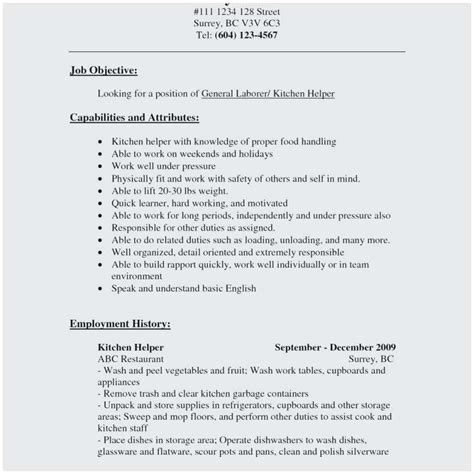 funky sle resume for kitchen staff component resume