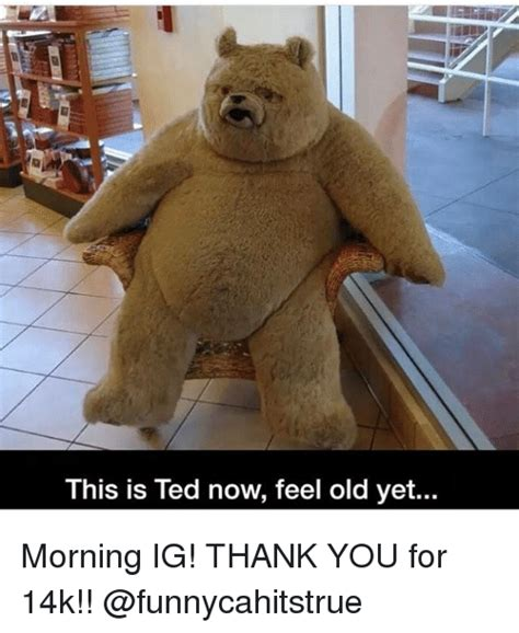 Ted Memes Ted Meme Www Pixshark Images Galleries With A Bite