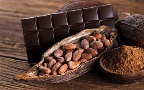 fonds decran confiseries chocolat noix madrier cacao