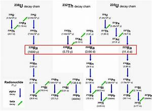 12  Schematic Diagram Of The Natural Uranium   238 U And