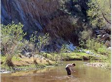 Arizona Hiking Trails with Water Best Summer Hikes AZ