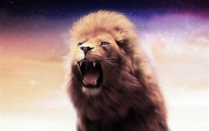 Lion Osx Wallpapers Mac Backgrounds