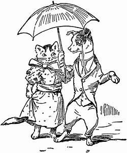 Dog  U0026 Cat Dressed With Umbrella