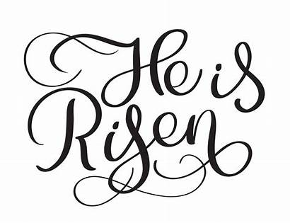 Risen He Text Calligraphy Vector Lettering Background
