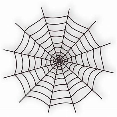 Spider Web Vector 1947 1995 Resolution