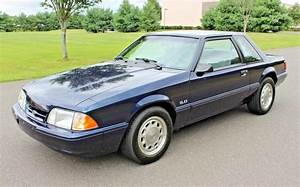 Beverly Hills Fox: 1993 Ford Mustang SSP