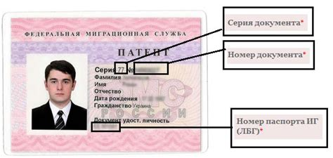 российский паспорт нового образца 2018