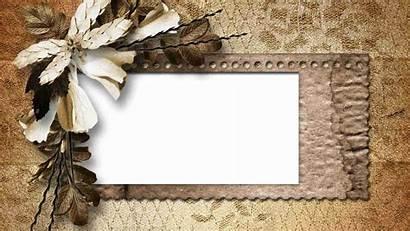Blank Flower Paper Retro Desktop Dried Backgrounds