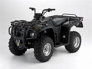 Hensim 250cc Utility Atv 5 Speed Manual Shift Macromover