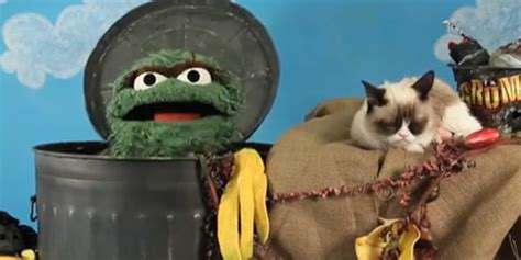 Grumpy Cat Vs Oscar The Grouch One Epic & Adorable