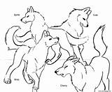 Coloring Wolf Pages Anime Pack Popular sketch template