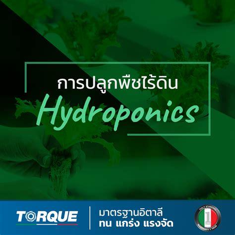 การปลูกพืชไร้ดิน Hydroponics - ปั๊มน้ำ TORQUE