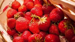 Wann äpfel Ernten : freizeit tipp obst selber pfl cken unser kreativblog ~ Lizthompson.info Haus und Dekorationen
