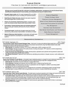 financial resume writer With financial services resume writer