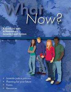 What Now  Juvenile Justice Guide