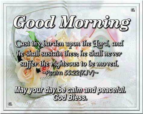 Download image plant your seed in the morning and keep busy all afternoon, for you don't know if profit will come from one activity or another—or maybe both (ecclesiastes 11:6). Psalm 55:22 KJV   Morning greetings quotes, Morning blessings