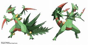 Mega-Sceptile vs Fake M-Sceptile (from me) by Tomycase on ...