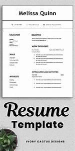 Professional Skills On Resume Student Resume Template Word Simple Modern Clean Easy