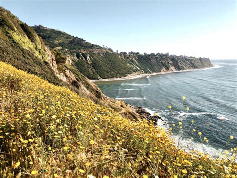 A Locals Guide For Beach Living In California By